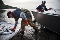 Joseph John Jr. washes freshly caught salmon with his son, Jeremiah John, while waiting for the tide to come in on July 1, 2015 in Newtok, Alaska. Families in the village of roughly 400 people depend on hunting and fishing.