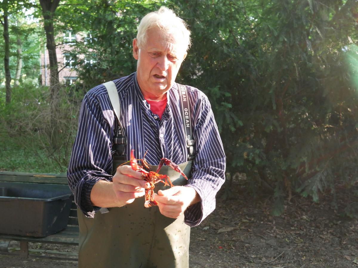 Hidde holds up a Louisiana crawfish he's caught. The invasive species is crowding out native crawfish in Berlin's waterways.