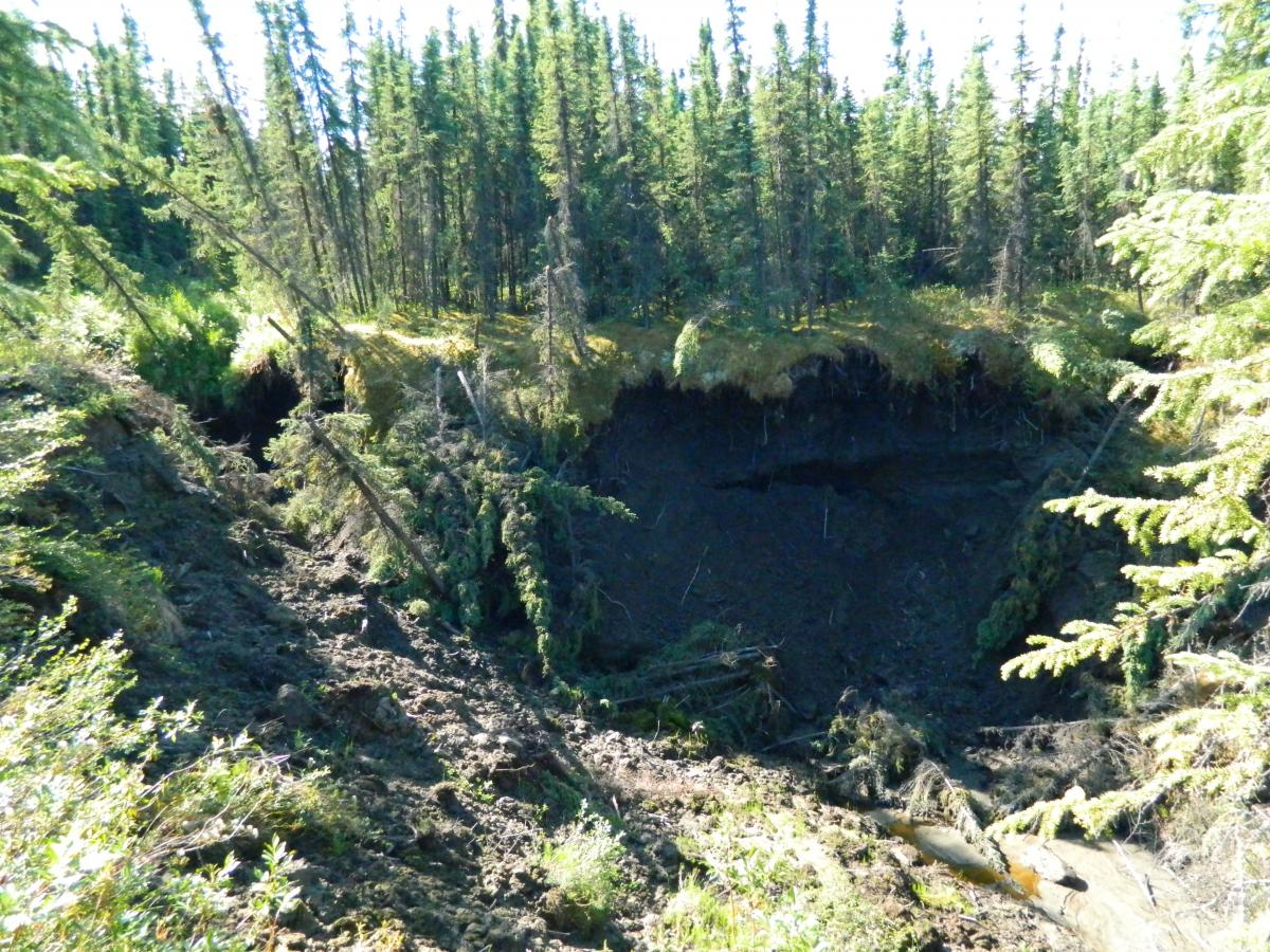Jeff Pederson noticed a sink hole forming just north of Fairbanks, Alaska.