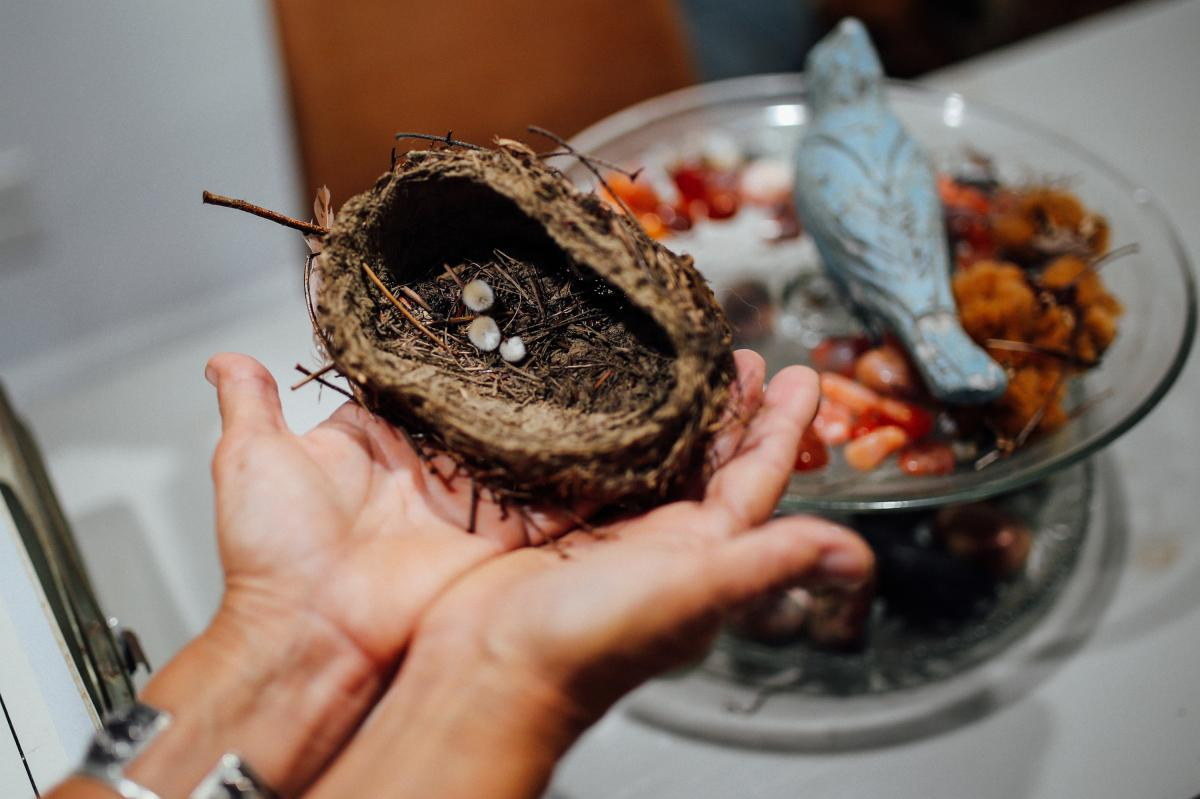 """Lori Guadagno holds the bird's nest. Once she found that nest, """"some little part of my heart started cracking a bit,"""" she says."""