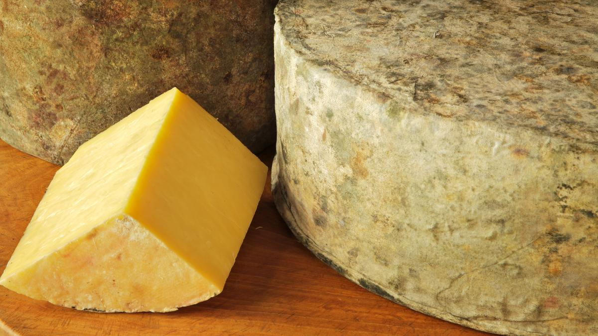 Shelburne Farms' clothbound cheddar has a bright yellow color because it's made from the milk of cows that graze on grasses high in beta-carotene.