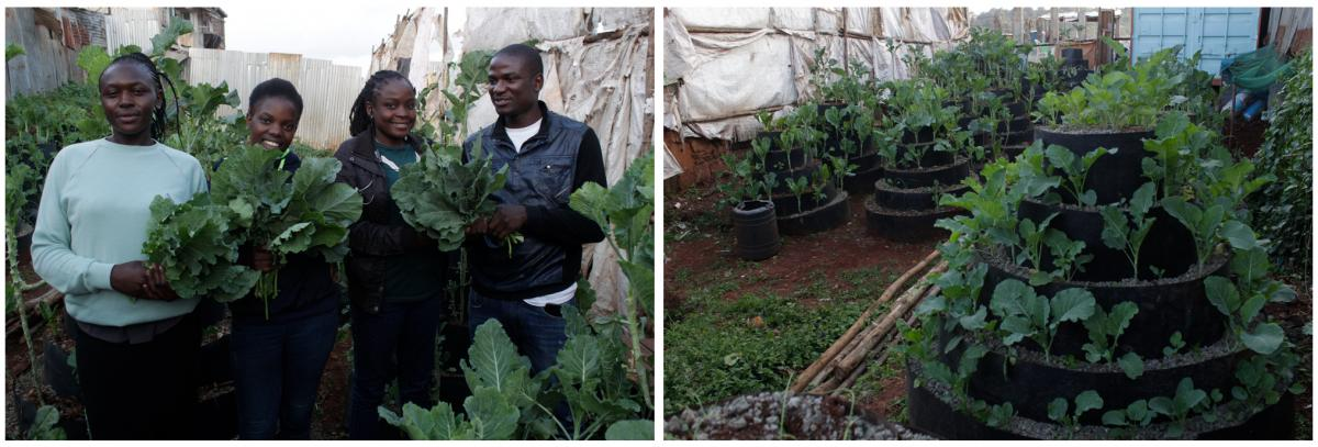Left: Urban farmer Victor Edalia (in white shirt) with three beneficiaries of his free veggies (left to right): Sheila Musimbi, a single mom; Celine Oinga, who comes from a family of 9 siblings; and Jackline Oyamo, jobless due to the pandemic. Right: Edal