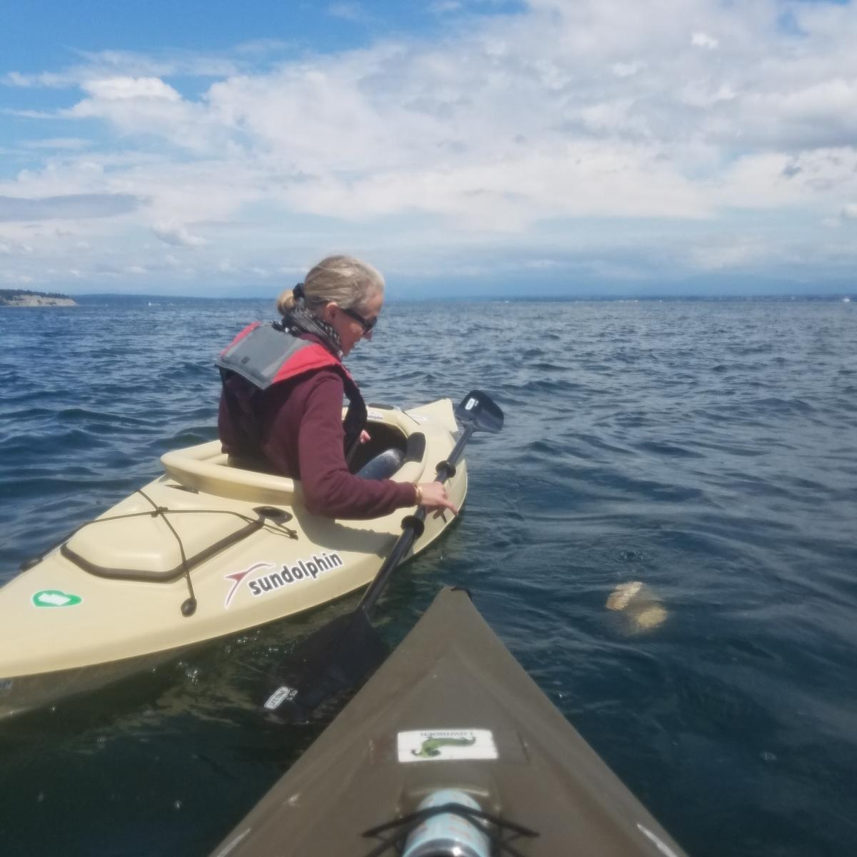 Just before the anniversary of van Spronsen's death, Ariel and her dad's second wife, Susan Harrell, kayaked onto Puget Sound. They brought along Van Spronsen's ashes and released them into the water.