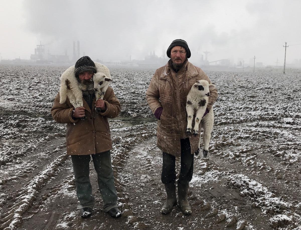 """""""Transylvanian Shepherds."""" Romania"""