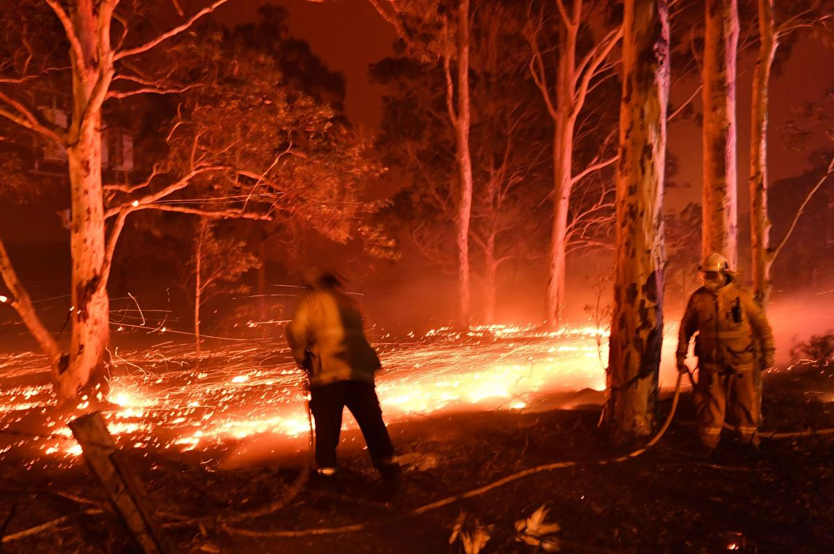 Firefighters hose down trees as they battle against bushfires around the town of Nowra in the Australian state of New South Wales on December 31, 2019.