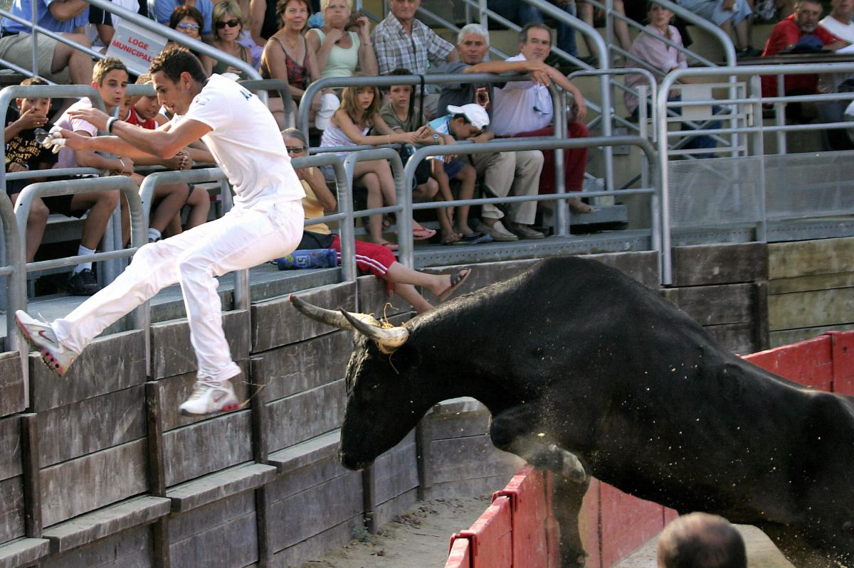 French raseteur Sabri Allouani flees from a bull during a bullfight in Vendargues, southeastern France, in 2006.
