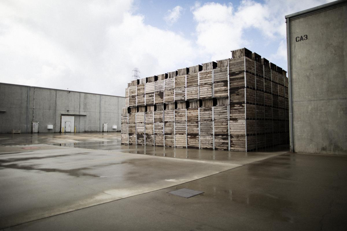 Cold storage (left) and empty garlic bins at the plant.