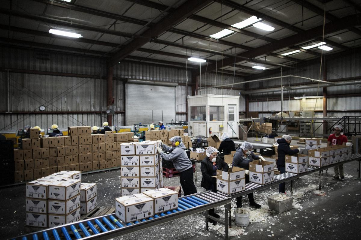 "Workers pack garlic into boxes at the plant. Ken Christopher, the company's executive vice president, said that when the Trump administration announced tariffs on China, ""My coworkers and I started texting each other, emails started flying back and forth."