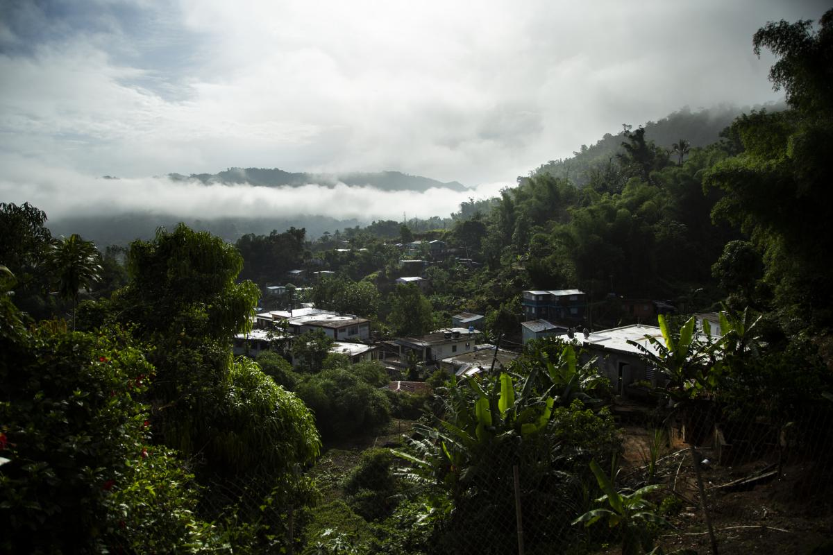 The view from Torres' house in the mountains of Utuado, Puerto Rico.