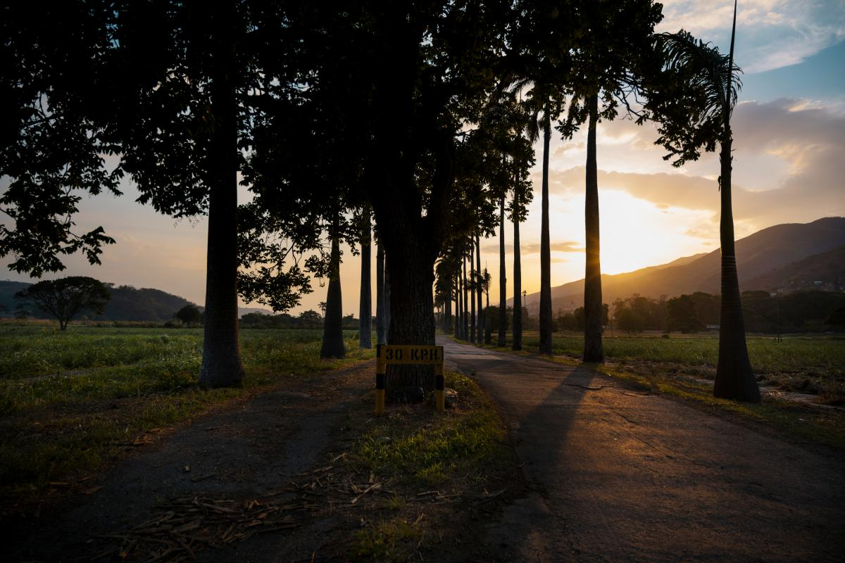 The sun sets on a road at  Hacienda Santa Teresa. According to Bernardo López, manager of the Santa Teresa Foundation, three gang members broke into the hacienda in 2003, in the hope of stealing the security guards' weapons. Instead of punishment, they w