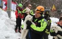 Emergency crews hold puppies they rescued on Monday in the area of the avalanche in Farindola, Italy.