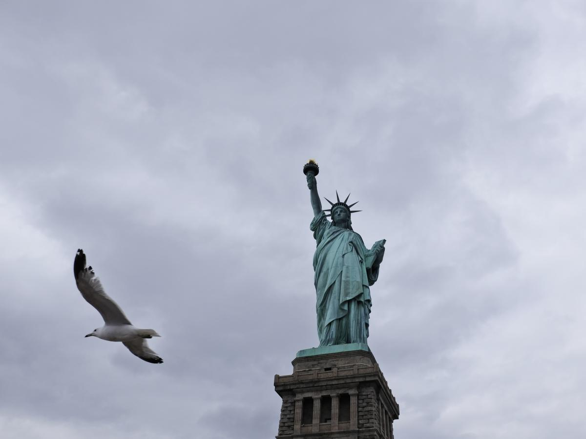 A seagull flies past the Statue of Liberty on Liberty Island on April 8, 2016. A smaller replica of Lady Liberty will soon be erected across from the original on Ellis Island.