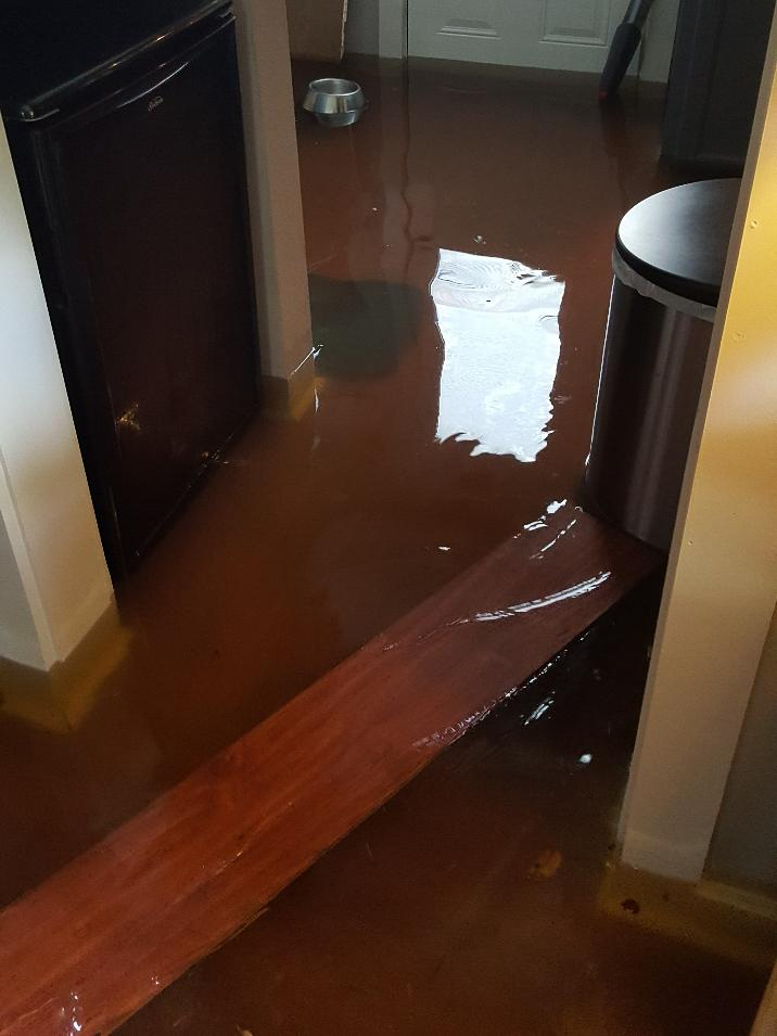 A 2016 rainstorm flooded the family home in Baton Rouge that Tracey and Tramelle Neldare had just finished renovating.