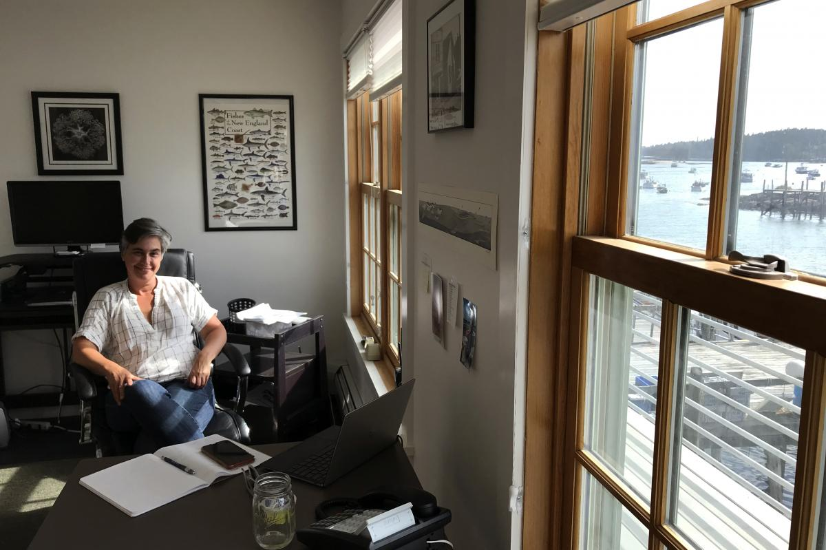 Carla Guenther, chief scientist at the Maine Center for Coastal Fisheries, in her office overlooking the harbor in Stonington. She's part of a research team studying the resilience of Maine's lobster industry and the communities that depend on it.
