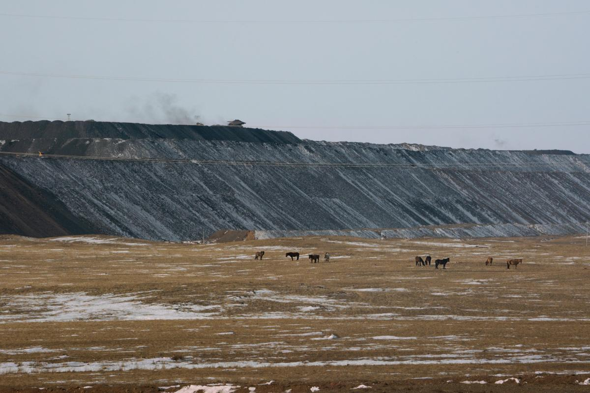 Horses graze in pastureland just outside one of Tavan Tolgoi's open-pit mines, where coal is being extracted for export.