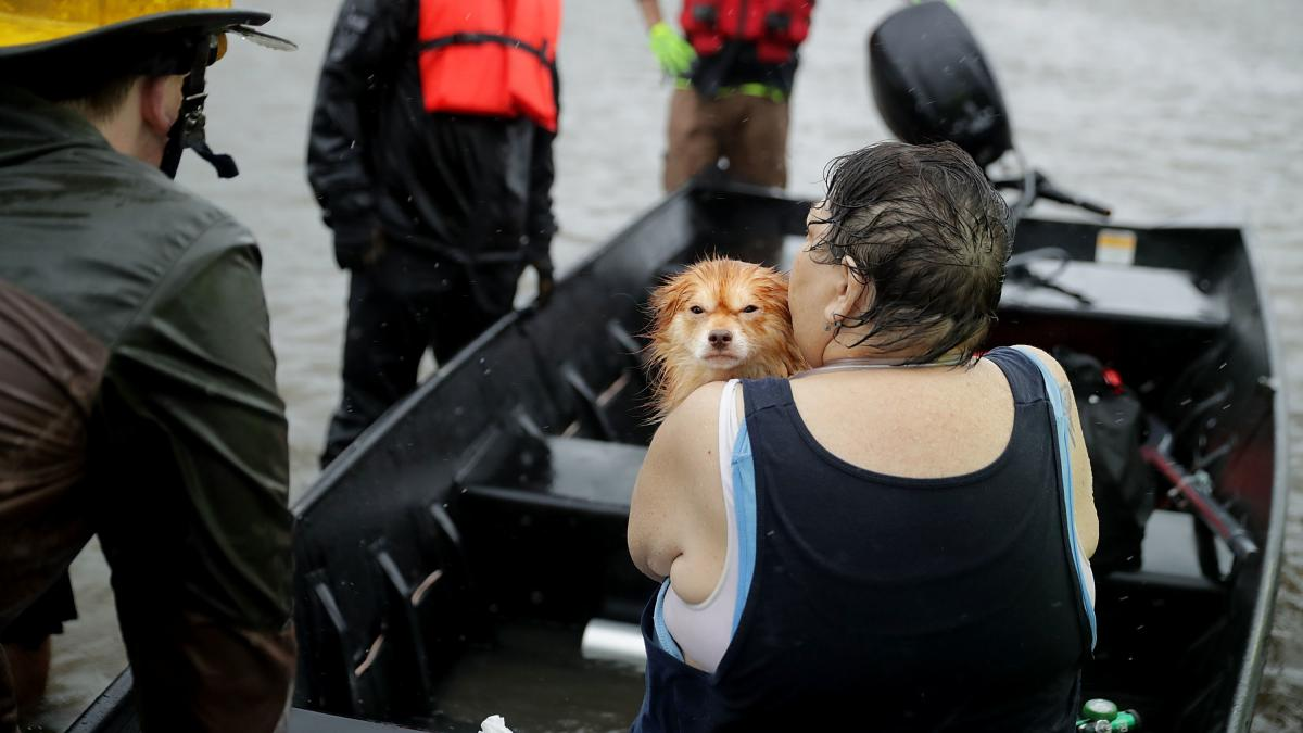 Rescue workers and volunteers help a woman and her dog leave their flooded home during Hurricane Florence Friday in James City, N.C., near New Bern.
