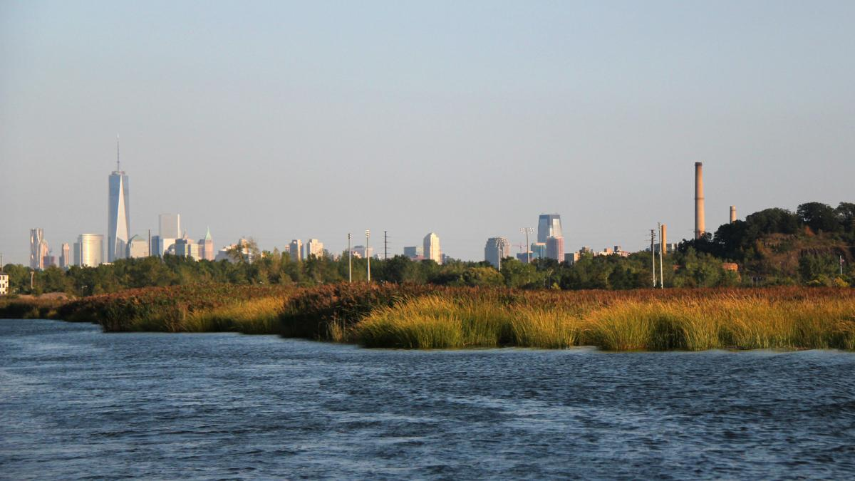 The Meadowlands are a vast marshy landscape just a few miles away from the New York City skyline. It's an industrial region, important economically as well as environmentally. A new plan proposes reworking the area into a vast floodable park, surrounded b