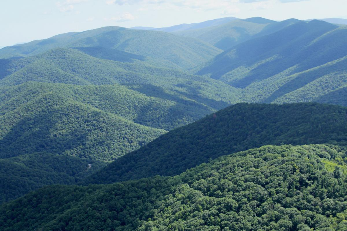 The Atlantic Coast Pipeline, one of the largest of the pending projects, would wind nearly 600 miles from West Virginia through this part of George Washington and Jefferson National Forests in Virginia, and into North Carolina.
