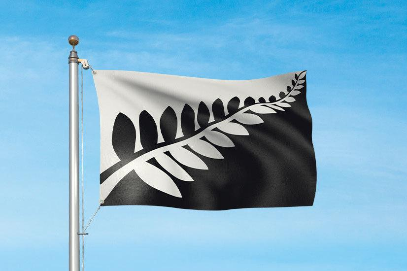 """The """"Silver Fern (Black and White)"""" design featured, like four of the other finalists, a silver fern. Designer Alofi Kanter described it as """"strong and simple."""""""