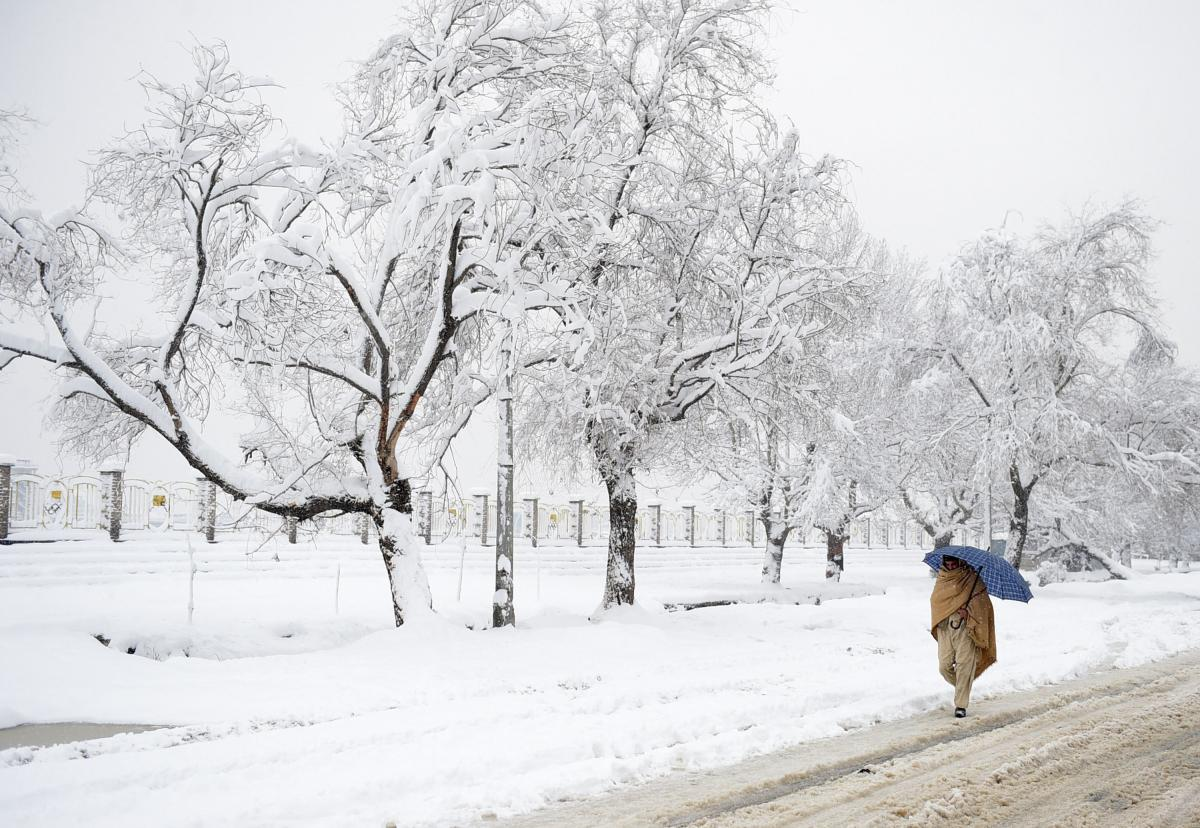 An Afghan pedestrian walks past snow-covered trees in Kabul on Feb. 5, 2017. Avalanches and freezing weather killed more than 20 people in different areas of Afghanistan, as rescuers worked to save scores still trapped under the snow.