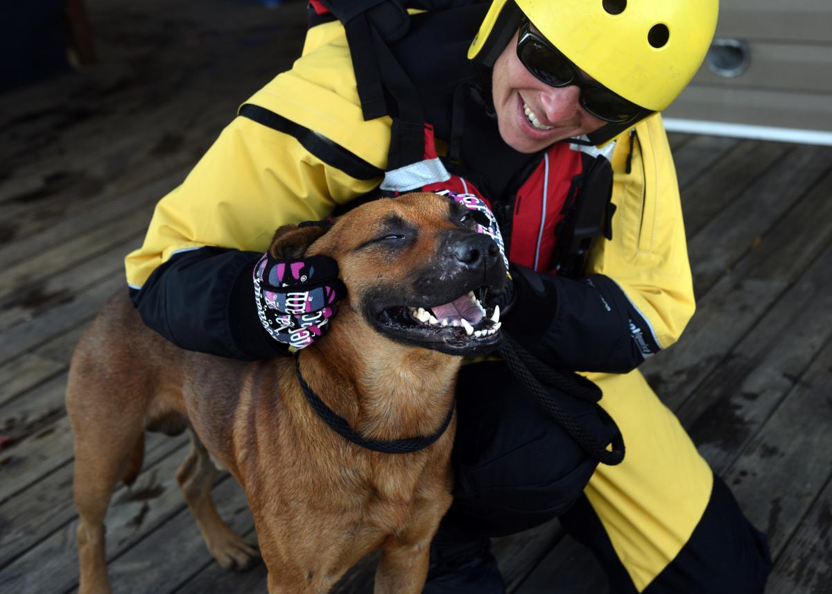 One saved dog was happy to be safe and sound and getting its ears scratched by rescuer Jasmine Holsinger.