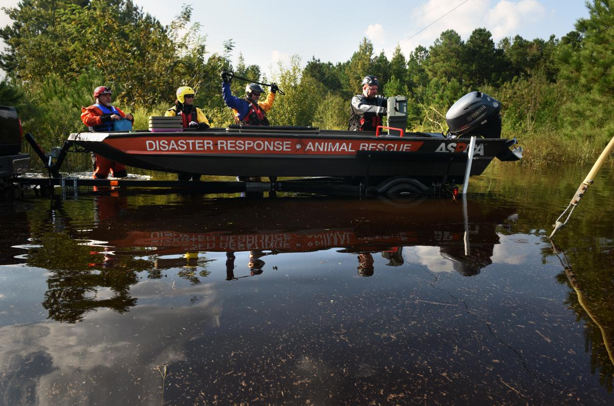 An ASPCA team — including (from left) Manny Maciel from New Bedford, Mass., Jasmine Holsinger from Myrtle Beach, S.C., Kyle Held from Jackson, Mo., and Adam Leath from Fort Myers, Fla. — used a water rescue boat to bring animals to safety.