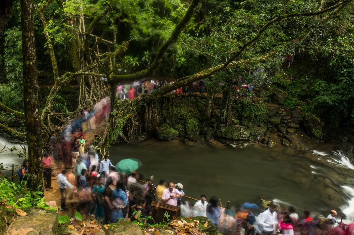 A crowd of tourists walks across a 150-year-old living root bridge near Nohwet village, Meghalaya. This bridge is popular among tourists because it's easily accessible from the vehicular road.