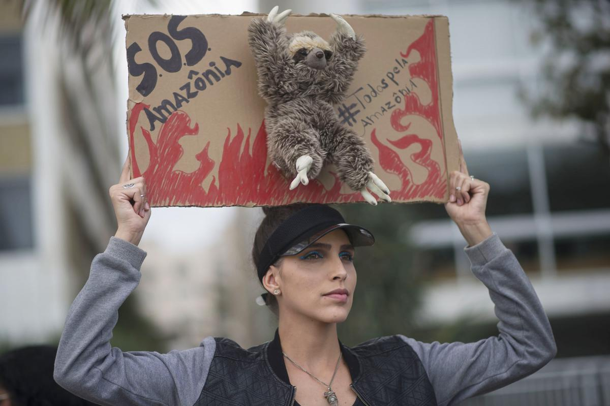 "During a protest in defense of the Amazon on Sunday, a woman in Rio holds up a sign that features a stuffed toy sloth and that reads, ""SOS Amazon. Everybody for the Amazon."""