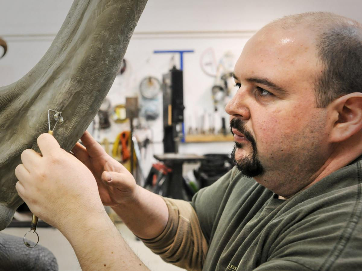 Taxidermist George Dante sculpts the musculature of the neck of a giant Galapagos tortoise.