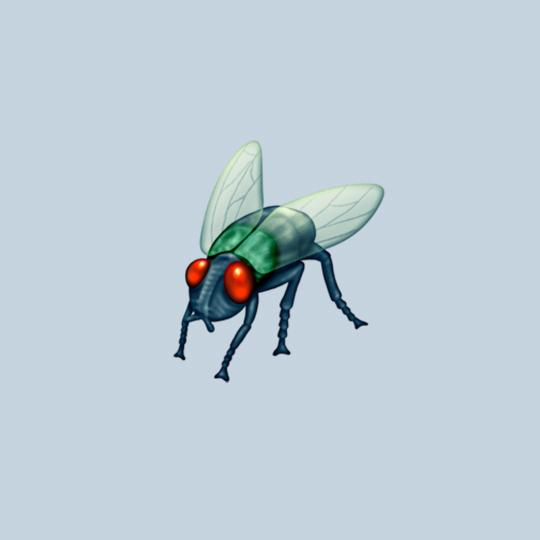 "Scientists on Twitter commented that this emoji looked too much like the much-hated house fly rather than the numerous other ""lovely"" flies they study."