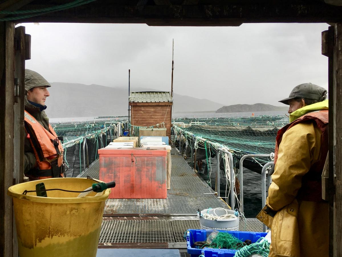 Two workers weather a summer storm at a salmon farm near the small Highland town of Ullapool. The link between Scotland's wild fish declines and the rise of salmon farms is a point of contention.