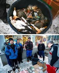 Jægere og fiskere sælger dagens fangster uden for et supermarked i Nuuk.