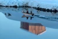 Jægere på vej ud mod havet i en motorbåd i Tiniteqilaaq, Grønland.
