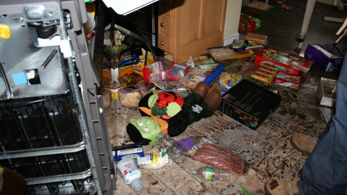 The day after their neighborhood was flooded, the Hardys returned to their house to start bagging up the garbage. The contents of the fridge were spread all over the kitchen floor and even outside. There were sausages in the street. The kitchen floor was