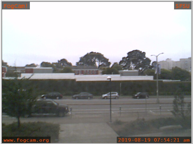 The FogCam's view of Holloway Avenue at San Francisco State University, seen at the time of writing. Come September, the cam's creators say, they'll be sunsetting these landmark glimpses of the mundane.