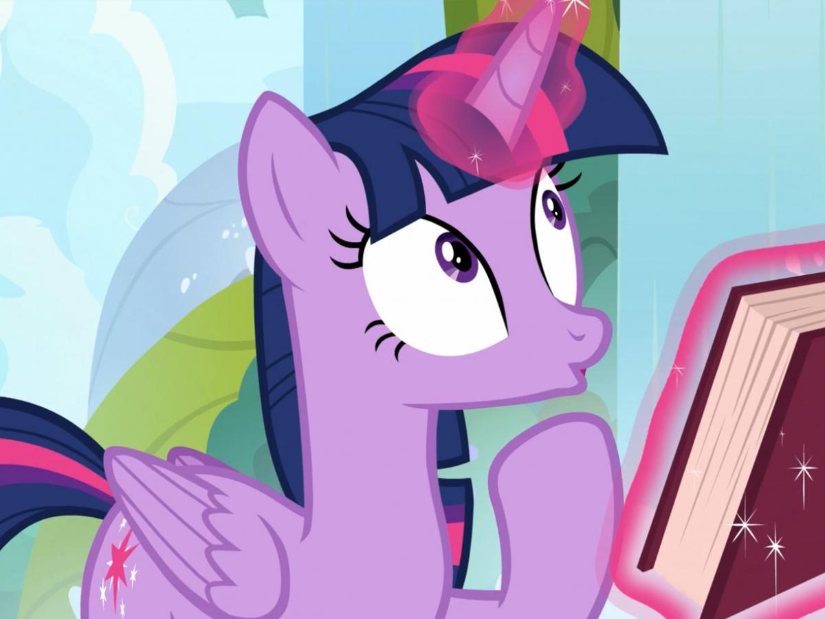 Many fans identify with the earnest, slightly neurotic Twilight Sparkle.