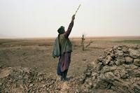 An Afghan shepherd calls to his children in November 2001.
