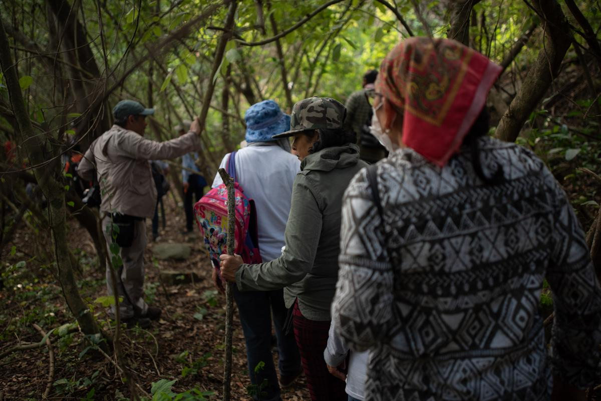 A group of searchers for missing persons walks through a field during an investigation by police authorities and family groups participating in the fifth National Missing Persons Search Brigade in Veracruz state.