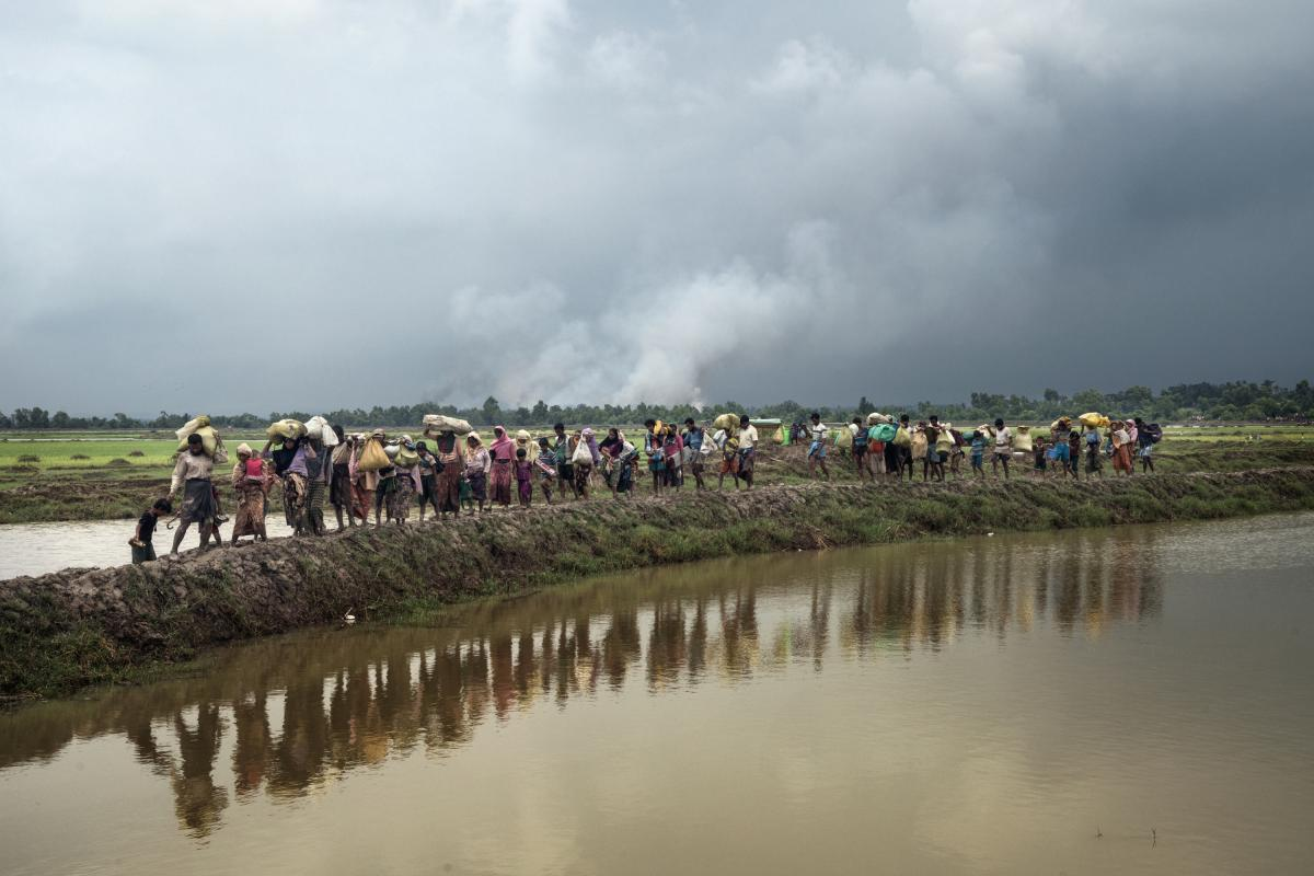 A line of Rohingya refugees continue their walk after crossing the Naf River that separates Myanmar and Bangladesh.