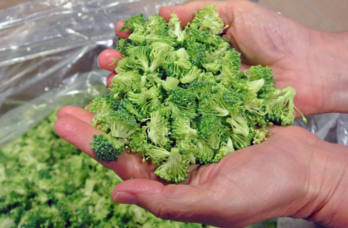 "Among the produce Bon Appetit's program aims to save from the dump: broccoli fines — the little pieces that fall off during processing. ""They go great on a deli line, in a stew or pre-made salad,"" says the company's waste specialist, Claire Cummings."