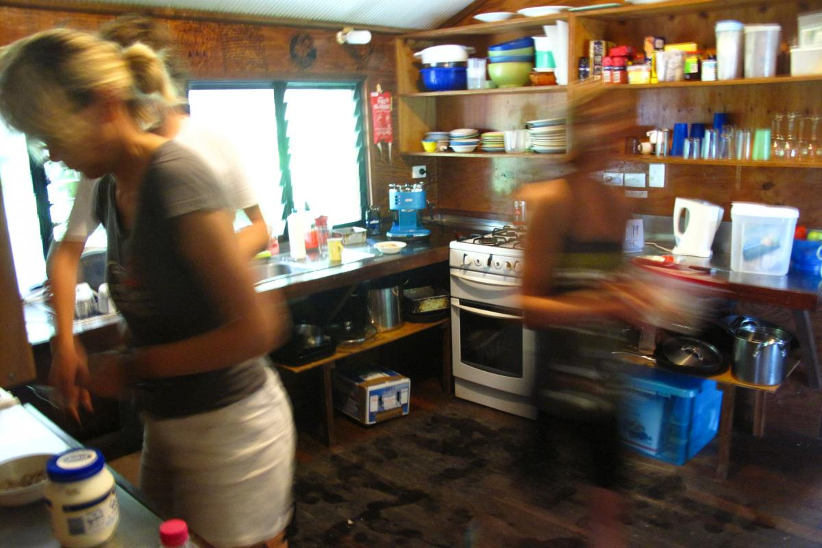 Members of the research team fend for themselves in a communal kitchen (while fending off persistent ants) before heading out for a challenging day on the reef.