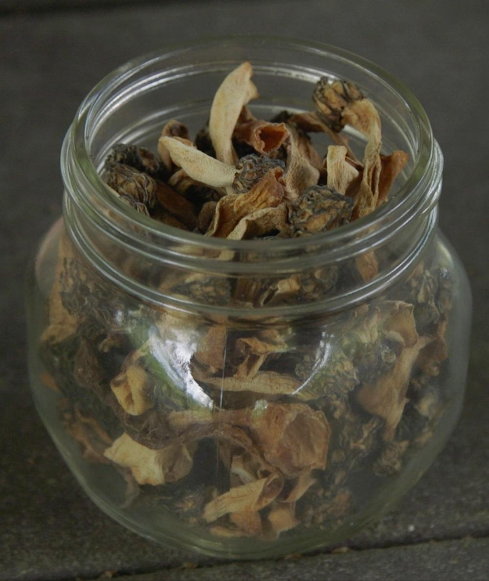 Nick Spero keeps this stash of dried morels, which he picked last season.