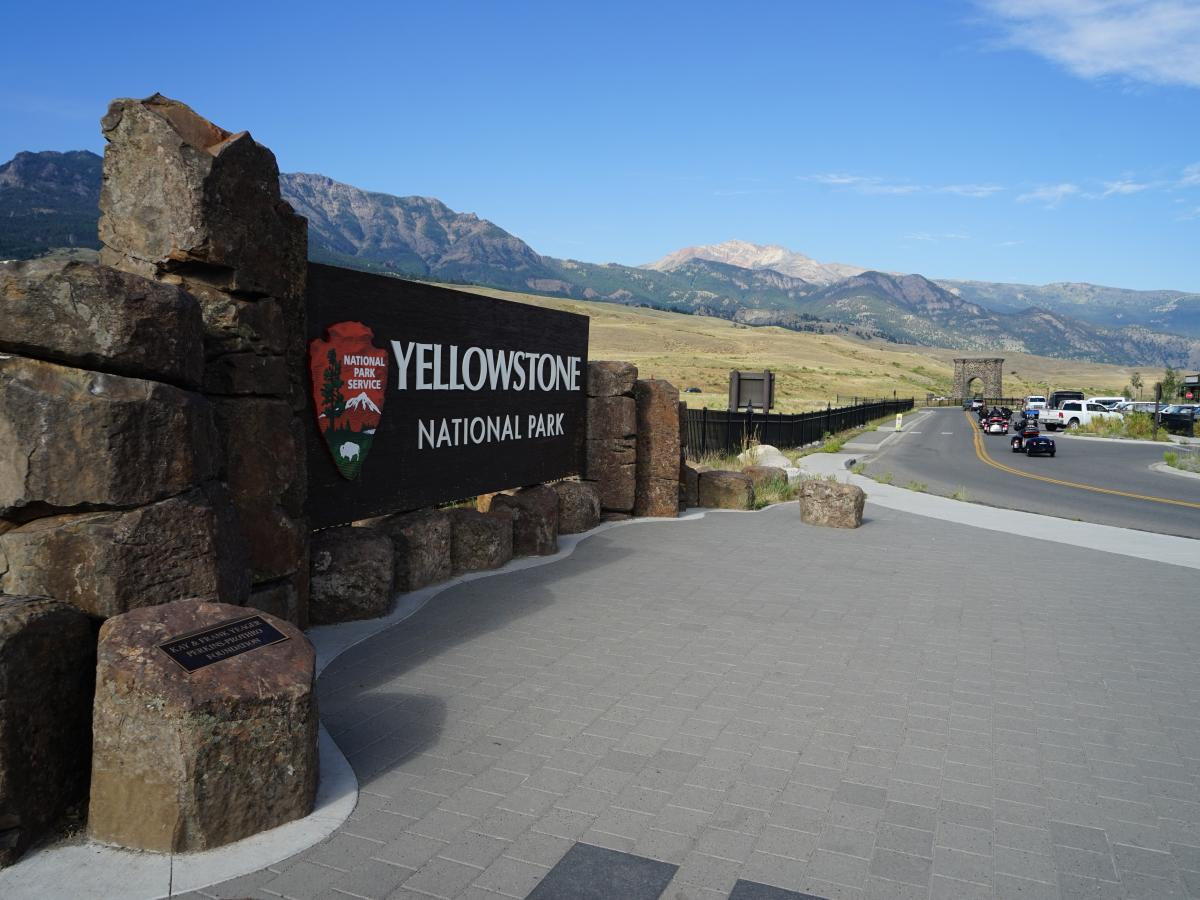 In July, Yellowstone National Park saw more car traffic than it did during the same month last year.