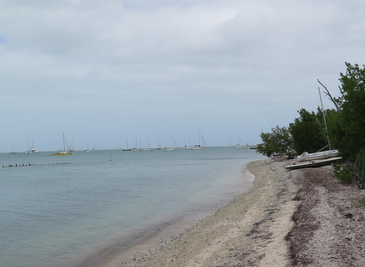Some people work in Key West but live on their boats anchored off Wisteria Island.