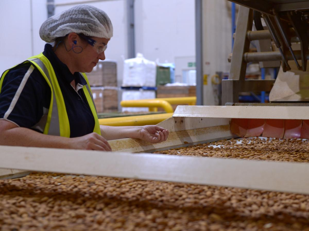 An employee inspects almonds moving along a conveyor at a Select Harvests Ltd. plant near Wemen, Australia, in 2016. China has imposed tariffs on U.S. nut exports amid a burgeoning trade war. Australia could help fill the void.