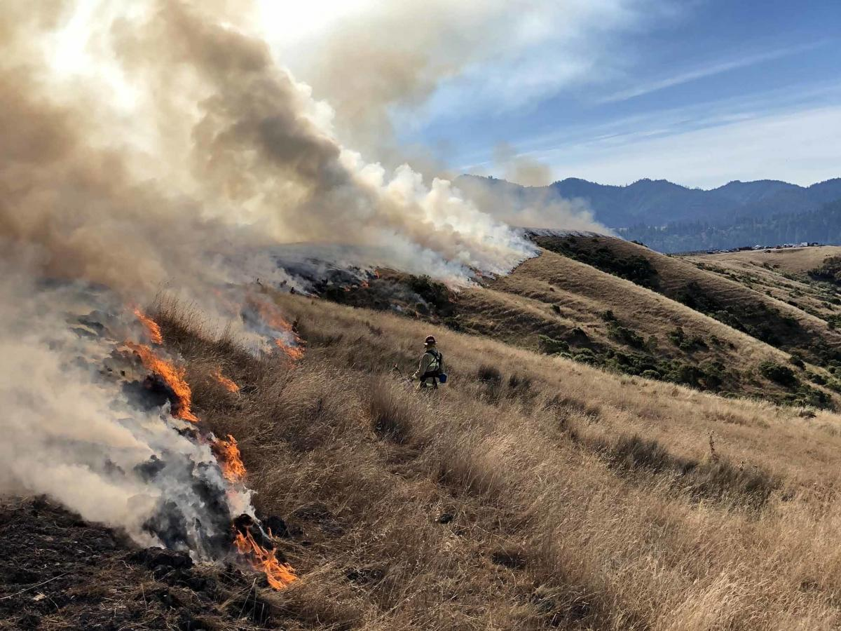 A number of prescribed burn associations have formed in California recently to help landowners. But still, California has only burned around 35,000 acres so far this year.