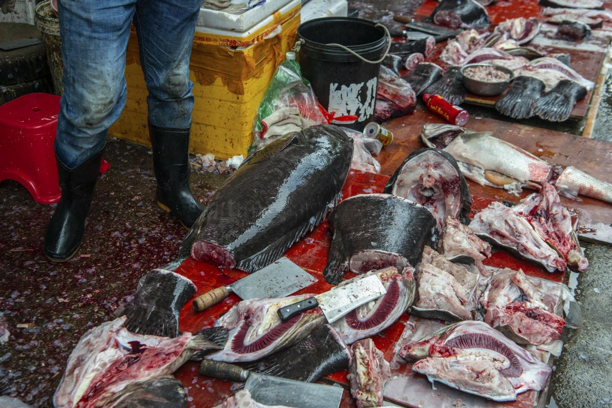 Wet markets really are wet — as shown by the floor by a seafood vendor's stand in the Shekou market in the southern coastal city of Shenzhen, China.