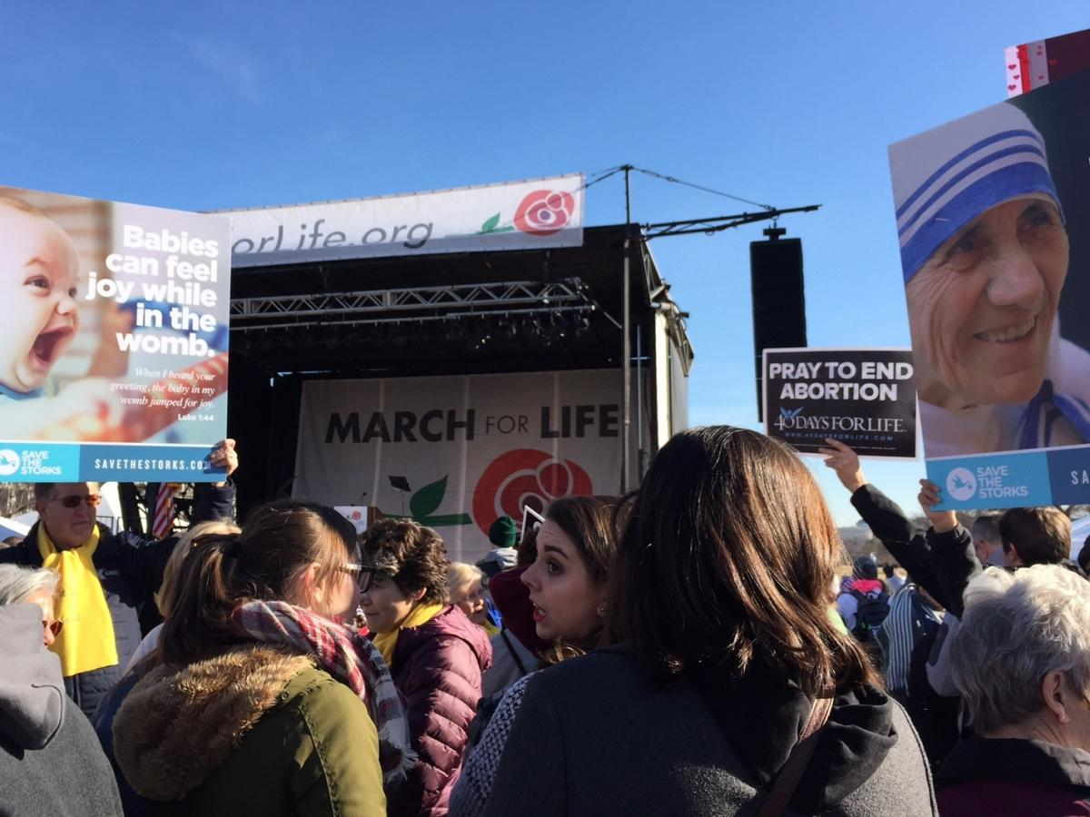 Attendees at the 2018 March for Life on the National Mall in Washington D.C.
