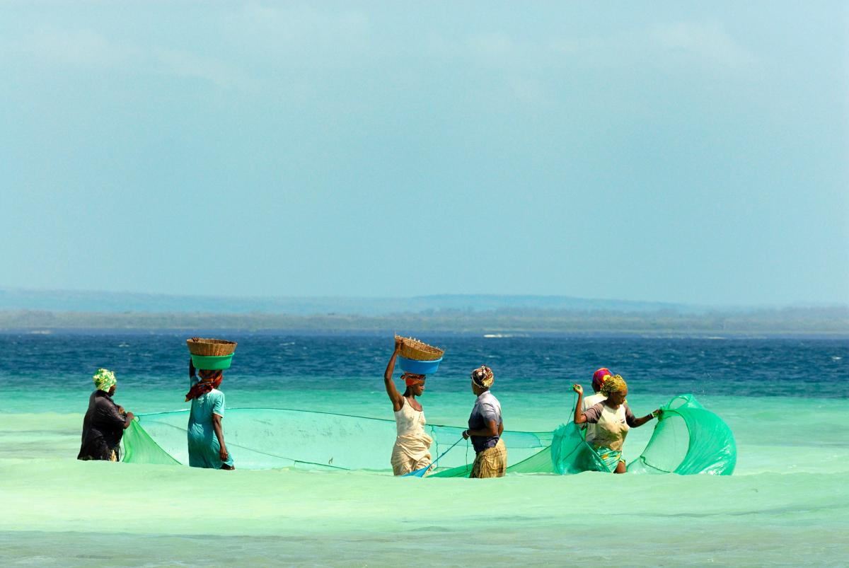 Women from a traditional sea-harvesting community fish in Mozambique.
