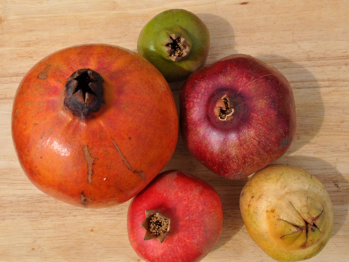 While many Americans only know one kind of pomegranate — the ruby red Wonderful — there are actually dozens of varieties with different flavor and heartiness profiles.